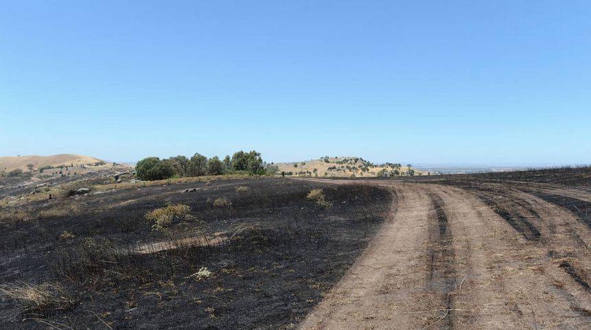Wilkinson Road fire 2013-12-28 22